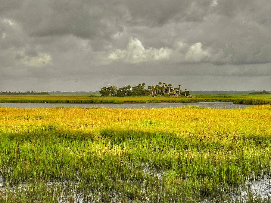 Marsh Photograph - The Lovely Low Country by Patricia Greer