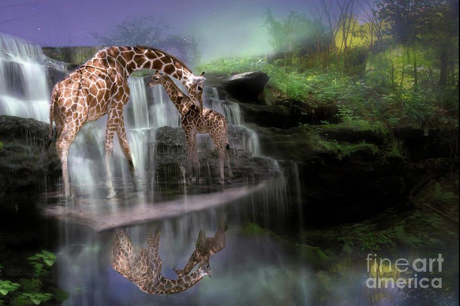 The Magical Bond Digital Art