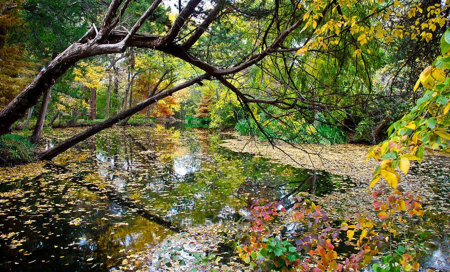 Landscape Photograph - The Magic Begins by David Clanton