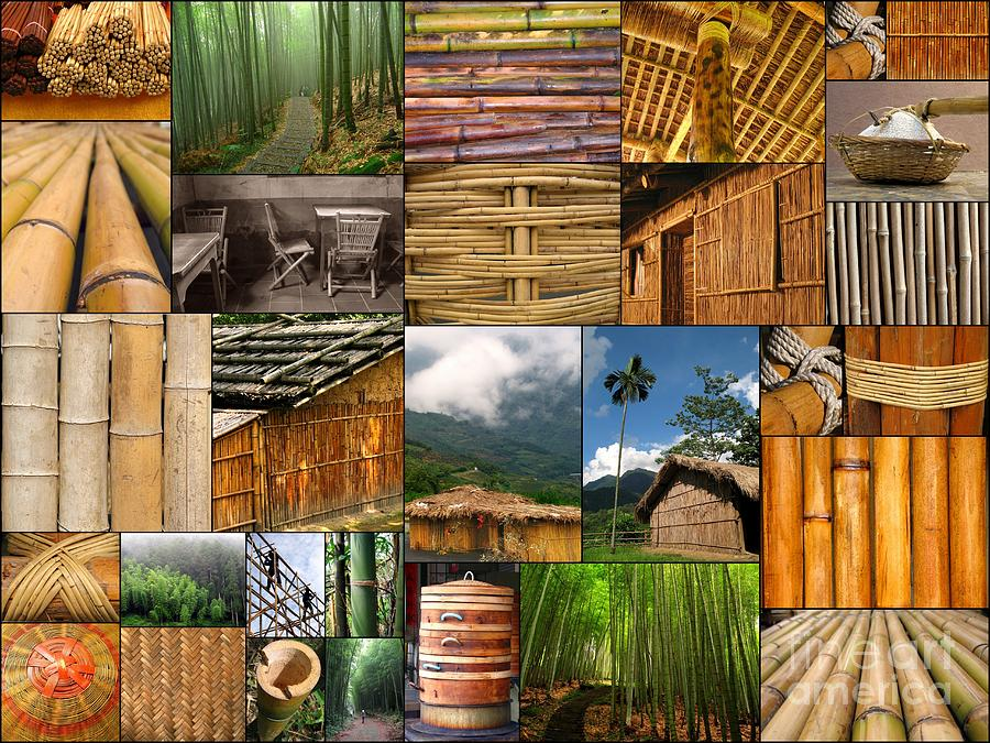 the Magic Of Bamboo Is A Collage Of Several Dozen Original Images Taken In Taiwan. They Show Are A Great Variety Of The Daily Uses Of Bamboo As Building Material Photograph - The Magic Of Bamboo by Yali Shi