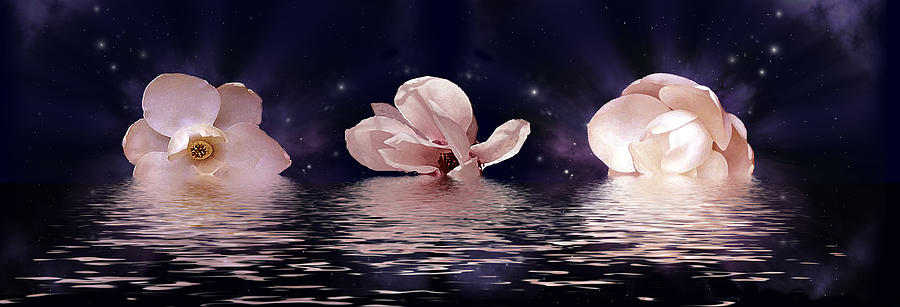 Magnolias Digital Art - The Magnolias by Julie Rodriguez Jones
