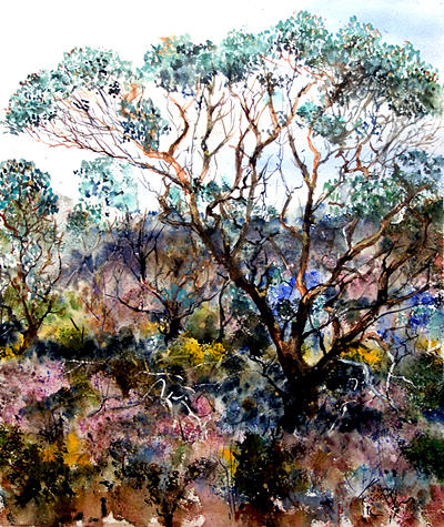 Landscape Painting - The Mallee by Kevan Collett