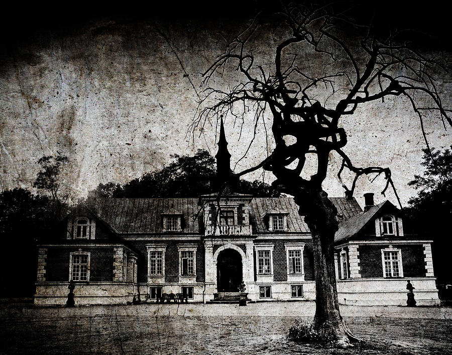 Creepy Photograph - The Mansion by Laura Melis