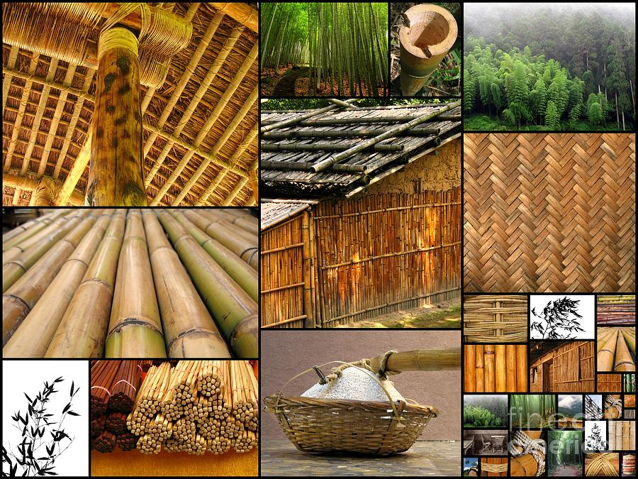 Household Items Photograph - The Many Faces Of Bamboo by Yali Shi