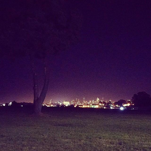 Nightshot Photograph - The Marina Green by Felicia Zurich-Gallagher