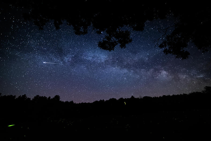 The Milky Way, Fireflies, And Shooting Stars Photograph