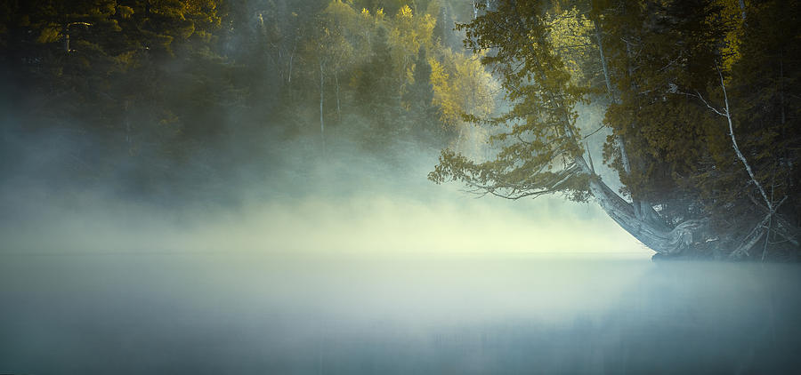 Water Photograph - The Mists Of Hunt Lake by Stuart Deacon