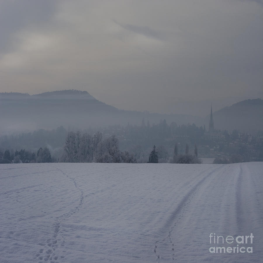 Winter Photograph - The Misty Wintery Afternoon by Angel  Tarantella