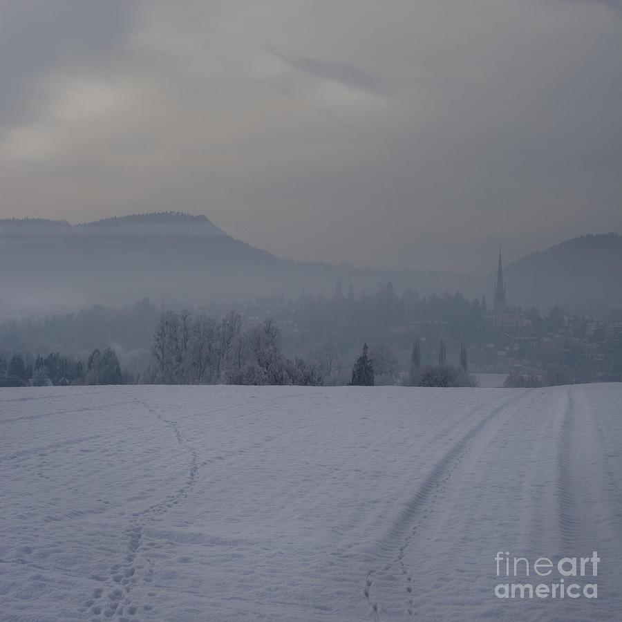 Winter Photograph - The Misty Wintery Afternoon by Angel Ciesniarska