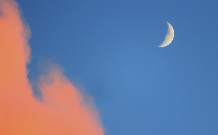 Moon Photograph - The Moon at Sunset by Holly Cyr