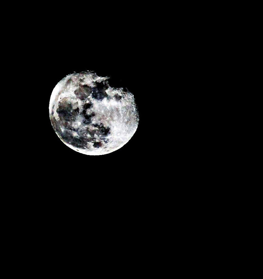 Moon Photograph - The Moon by Cherie Duran