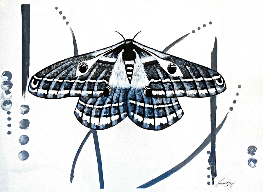 The Multifarious Paths of the Emperor Moth by Jean Fry
