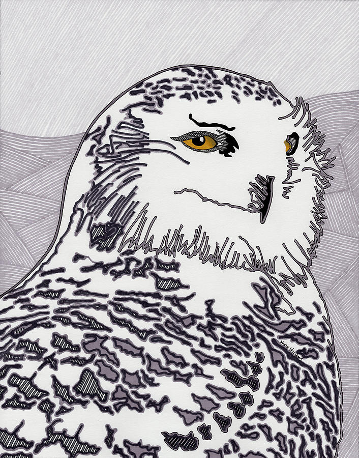 Snowy Owl Drawing - The Mysterious Snowy by Molly Williams