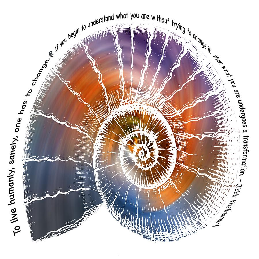 The Nautilus Shell Transparent -  Quote by OLena Art Brand