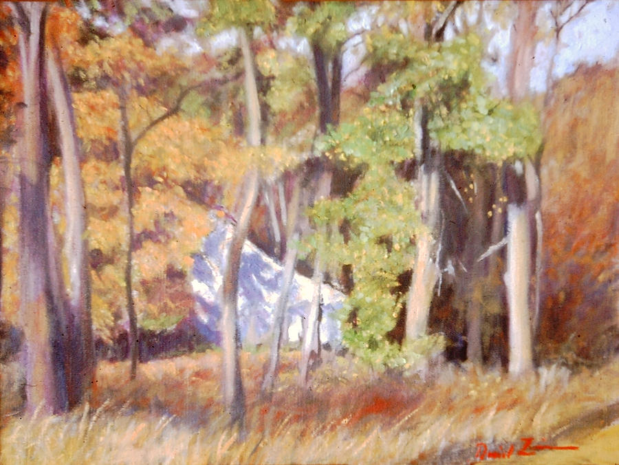 Autumn Landscape Painting - The Neighbor In Back by David Zimmerman