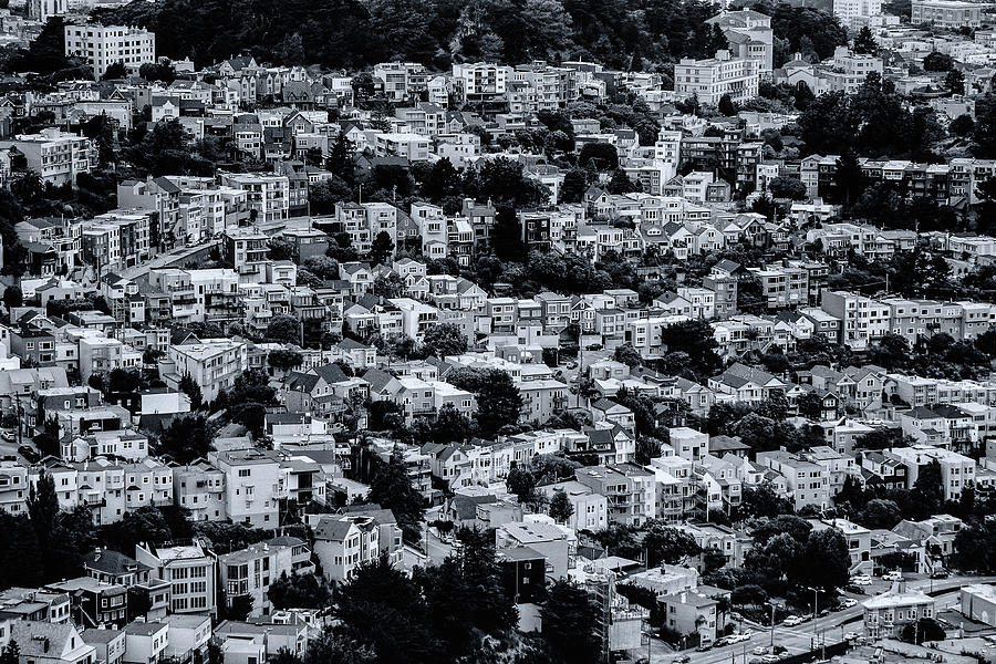 San Francisco Photograph - The Neighborhood by Emily Bristor