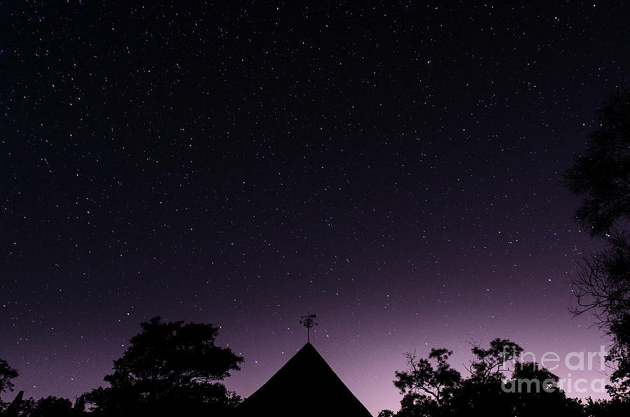 The Night Sky, Great Dixter House and Gardens by Perry Rodriguez