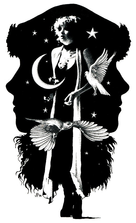 The Nightbird by Johanna Pieterman