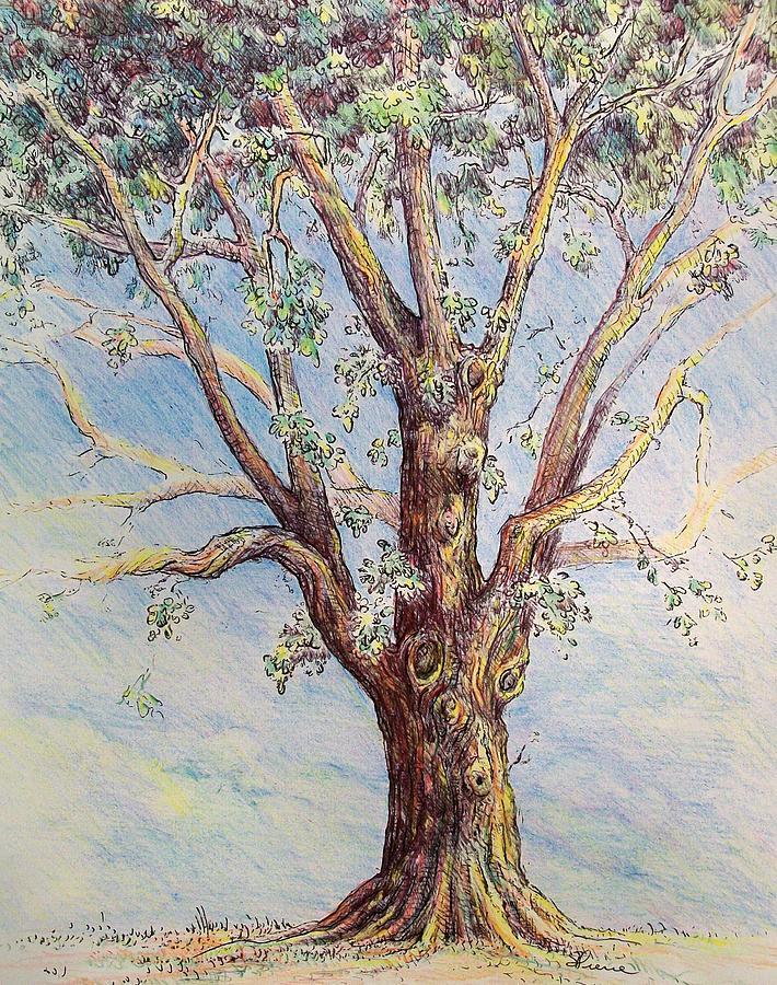 Oak Tree Mixed Media - The Oak Tree by Georges St Pierre