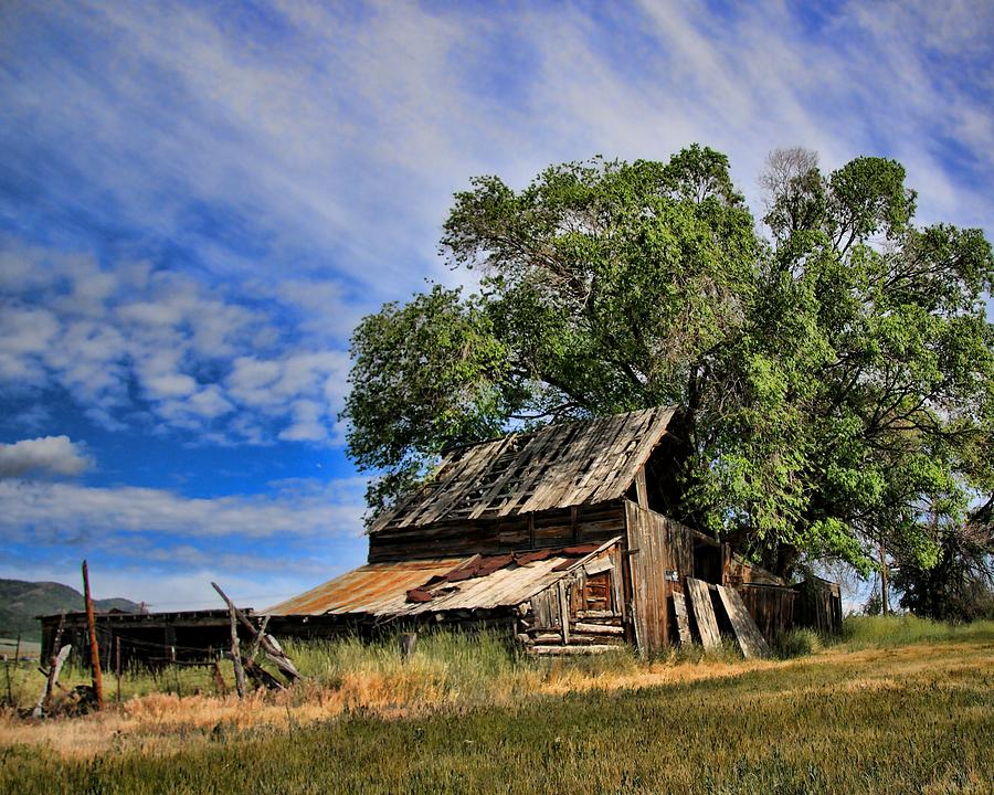 Old Photograph - The Old Barn by Gene Praag