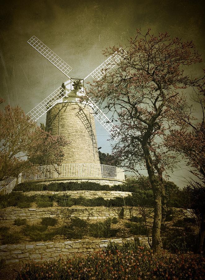 The Old Dutch Mill by David Dunham