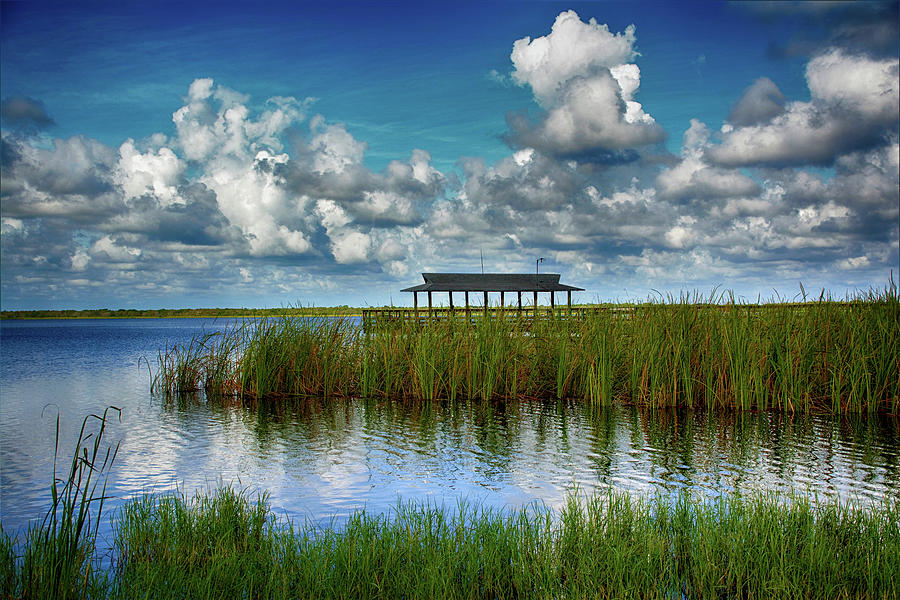 The Old Fishing Pier At Lake Trafford Photograph By Don