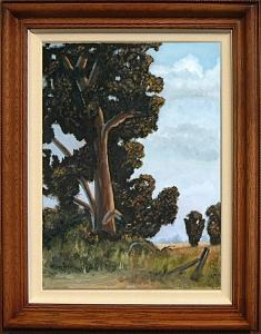 Eucalyptus Painting - The Old Meeting Place by Graham Murray