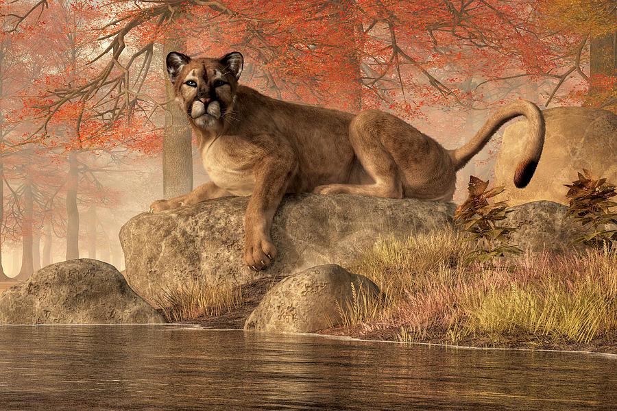 The Old Mountain Lion Digital Art
