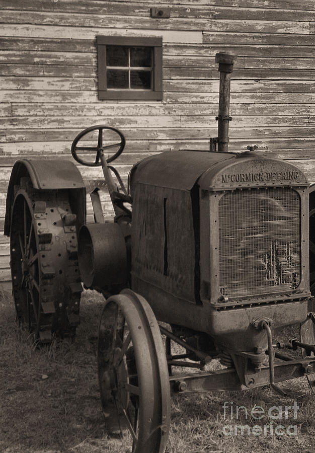 Abandoned Photograph - The Old Mule  by Richard Rizzo