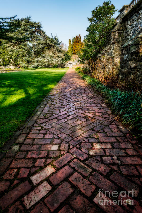 Winter Photograph - The Old Path by Adrian Evans