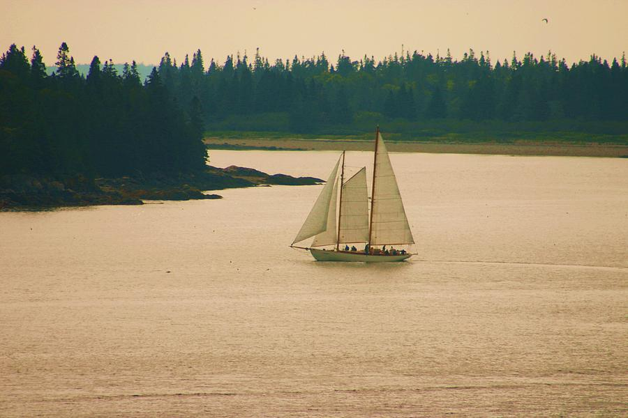 Sailing Photograph - The Old Schooner by Dennis Curry