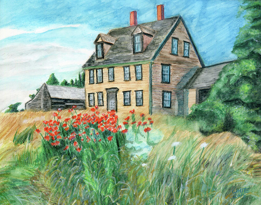 The Olson House With Poppies by Dominic White