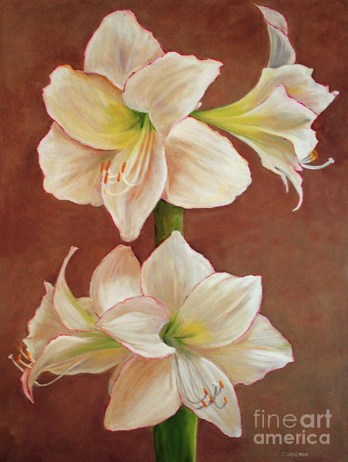 Flower Painting - The Opening Flower by Carolyn Shireman