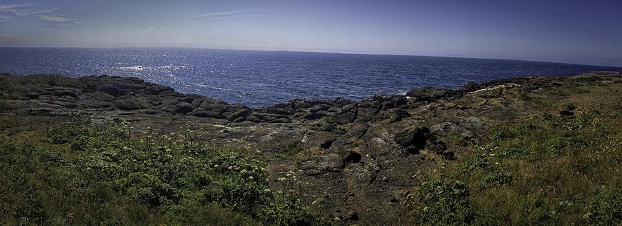Oregon Photograph - The Oregon Coast by Ryan Smith