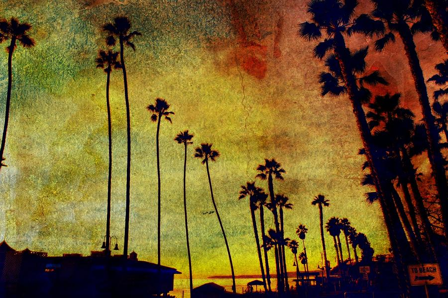 Beaches Photograph - The Palms by Kevin Moore