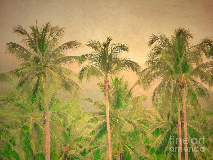 Palm Photograph - The Palms by Tara Turner