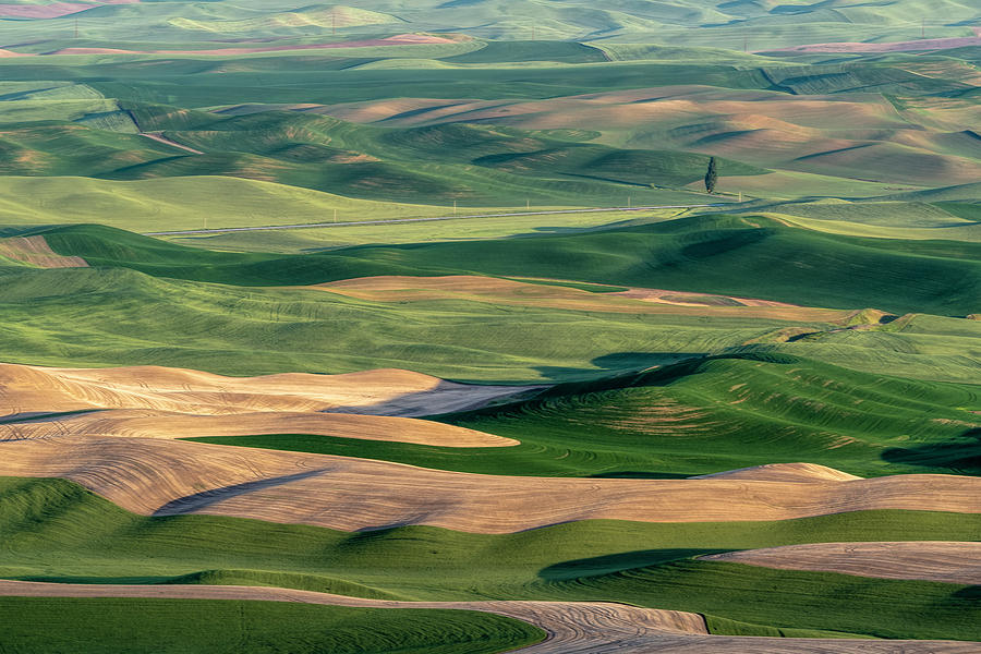 The Palouse by Joe Paul