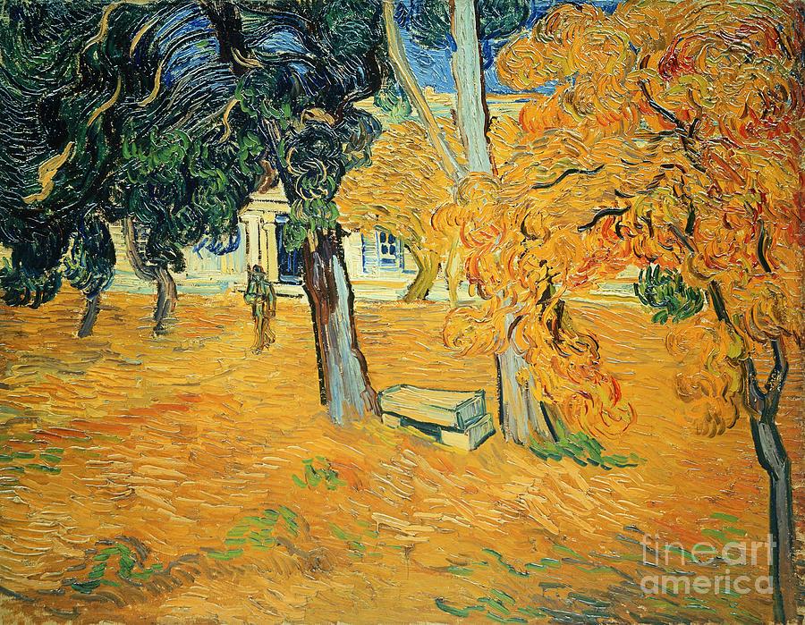 The Painting - The Park At Saint Pauls Hospital Saint Remy by Vincent van Gogh