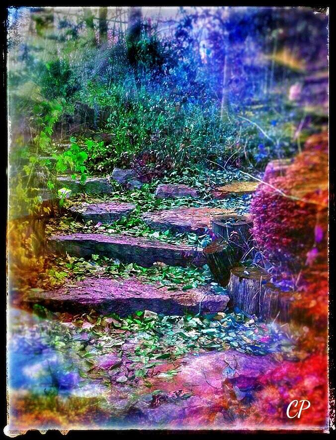 The Path  by Christine Paris