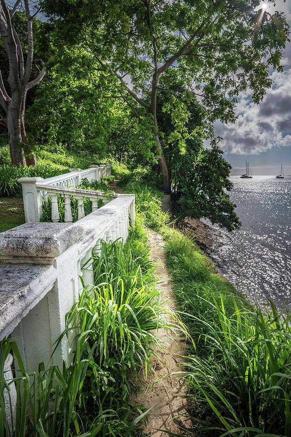 The Path by Gary Felton