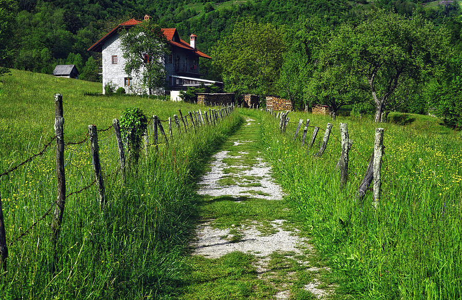 Europe Photograph - The Path Home by Lia Leslie