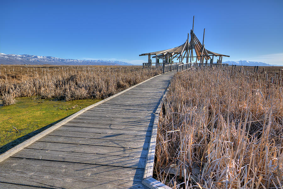 Antelope Island Photograph - The Path by Joan Escala