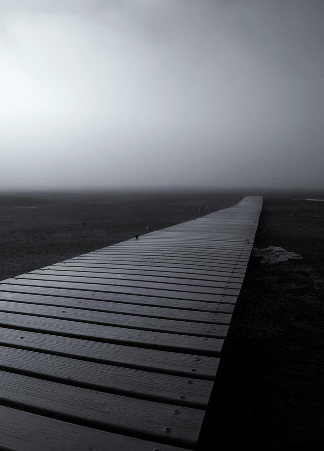 Dock Photograph - The Path by Mike  Dawson