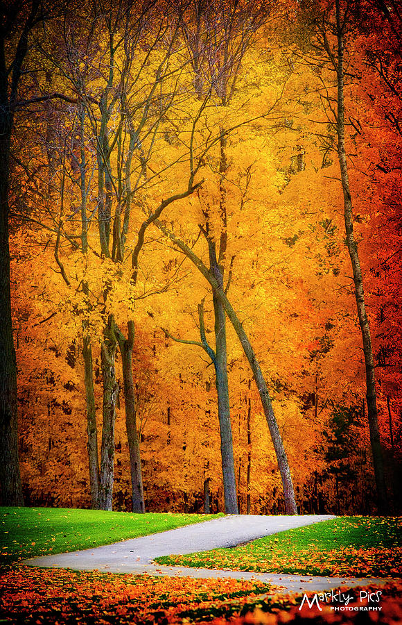 Path Photograph - The Path To Autumn by Mark Steigenga