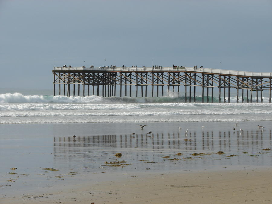Peir Photograph - The Pier by John Wilson