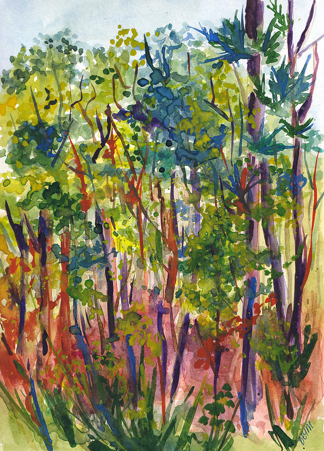 The pines by Clara Sue Beym