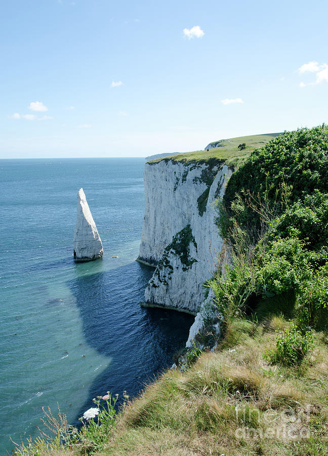 Stack Photograph - The Pinnacle Stack Of White Chalk From The Cliffs Of The Isle Of Purbeck Dorset England Uk by Andy Smy