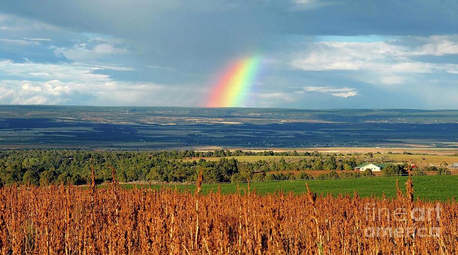 Rainbow Photograph - The Pleasant View Rainbow by David Lee Thompson