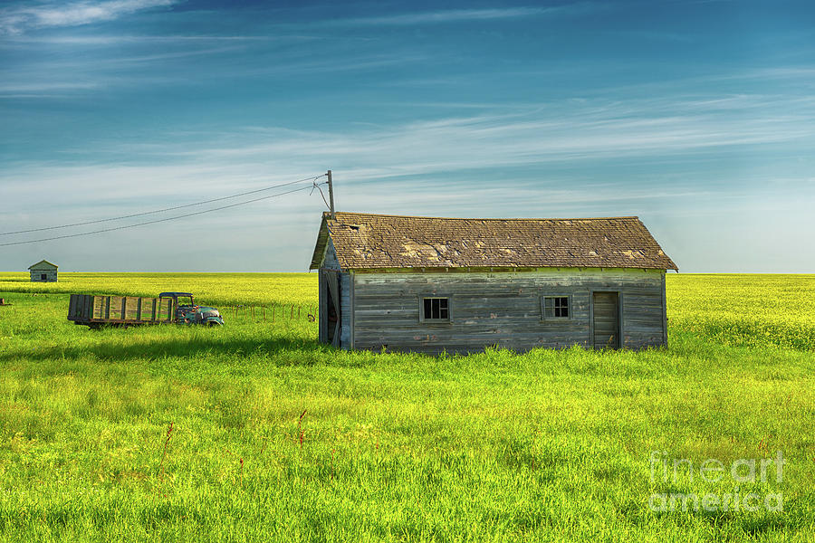 Canada Photograph - The Prairies  by Ian McGregor