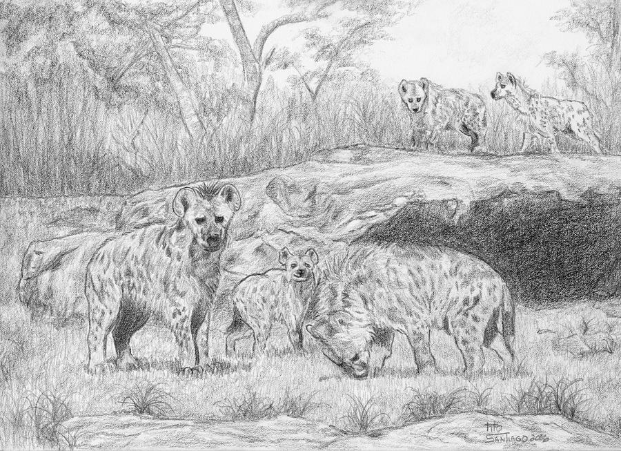 Animals Drawing - The Pride by Tito Santiago